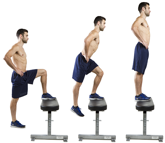 Image result for step ups exercise