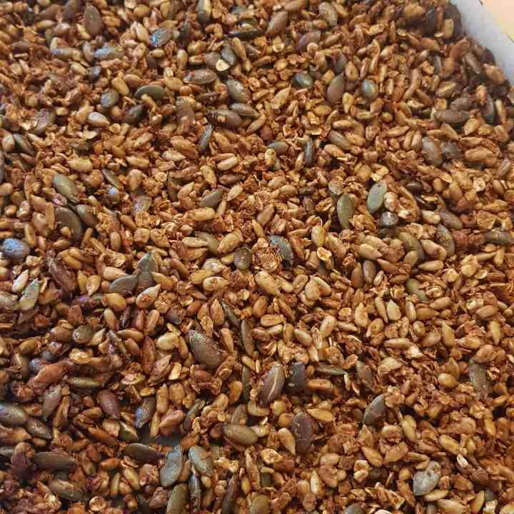 Honey Roasted Sunflower and Pumpkin Seeds with Coconut and Oats