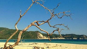 Tarimbang Beach, Sumba
