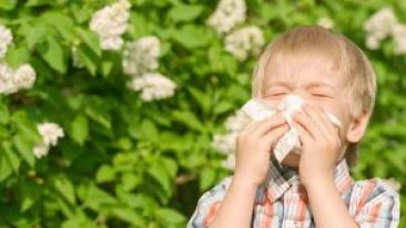 allergies-traitement-naturel