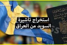 Photo of فيزا السويد للعراقيين – معلومات هامة للراغبين في الهجرة إلى السويد