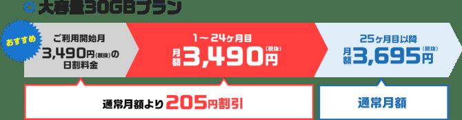 ネクストモバイル30GBプラン