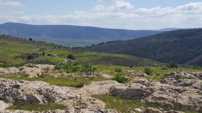 View of Beit Netofa Valley