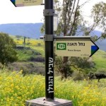 Typlical Golan Trail Sings
