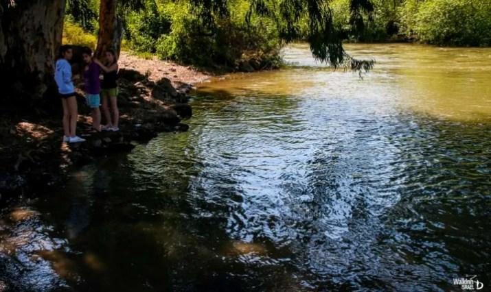 Nice Spot along the Hermon (Banyas)