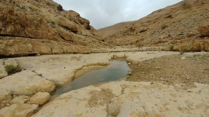 Water in Wadi Kanfan