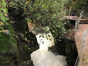 Hanging Bridge Banias (Hermon Stream) Nature Reserve