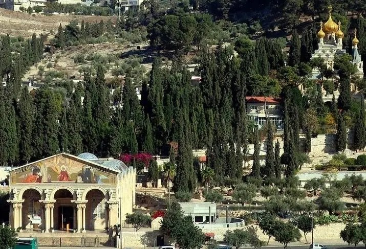 Churches on the mount of olives walking tour
