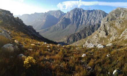 Wemmershoek Peak