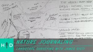journaling-landscape_survey-thumbnail