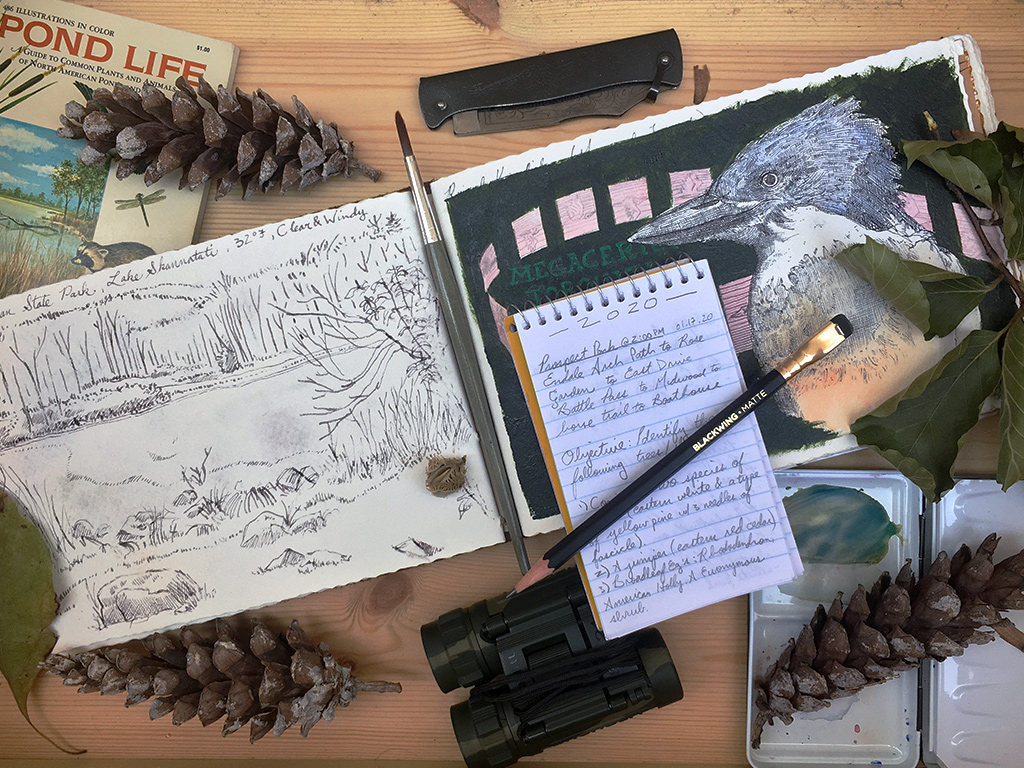 nature journaling prompts 2