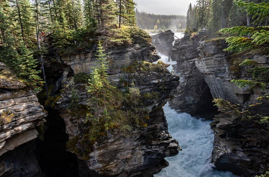 Athabasca Falls has so many looks depending what part of the trail