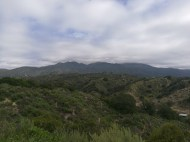 View climbing up the Live Oak Trail