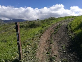 Vista Point / Vista Trail Junction