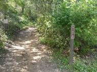 Vista Trail Junction