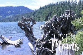 Hiker Moms Hiking Trail Lost Lake Resort Hood River ORegon 1