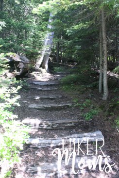 Hiker Moms Hiking Trail Lost Lake Resort Hood River ORegon 7