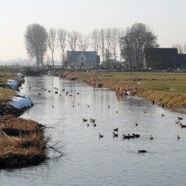Rondje De Ronde Hoep, 15 februari 2017