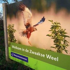 De Zwaakse Weel, 8 december 2017