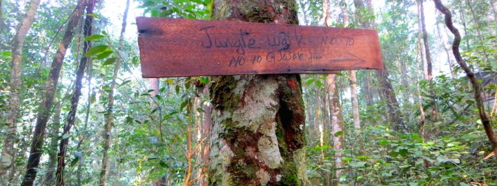 Gunung Jasar - Share My Hikes | Hikers For Life