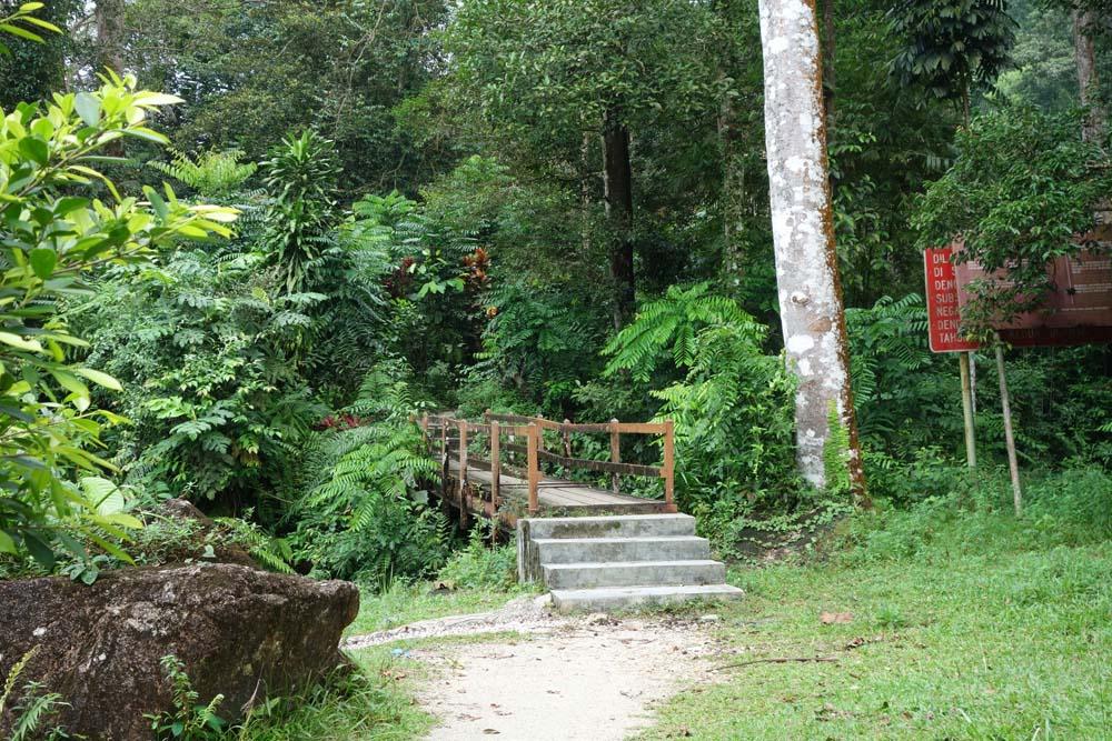 Bukit Larut - Share My Hikes