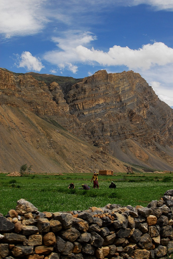 demul-demul village-spiti valley-hikesdaddy