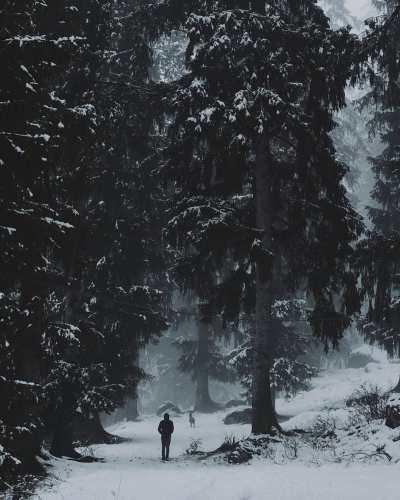 Kalga homestay- how to reach kalga- kalga parvati valley-kalga hash -hikesdaddy