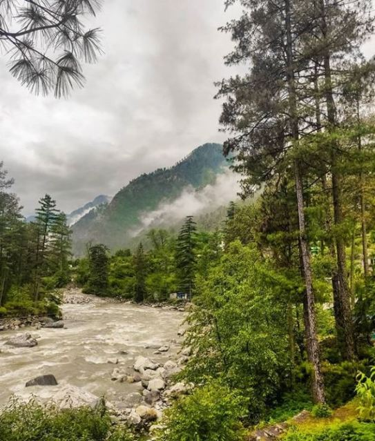 chalal village- chalal- how to reach challal- hotels in challal-hikesdaddy-kheerganga-kasol-parvati valley-hash-malana-grahan-lapas-how to reach kasol 50