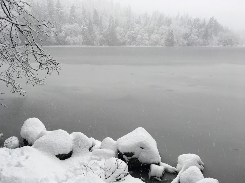 killarney lake bowen island, hikes near vancouver, crippen regional park