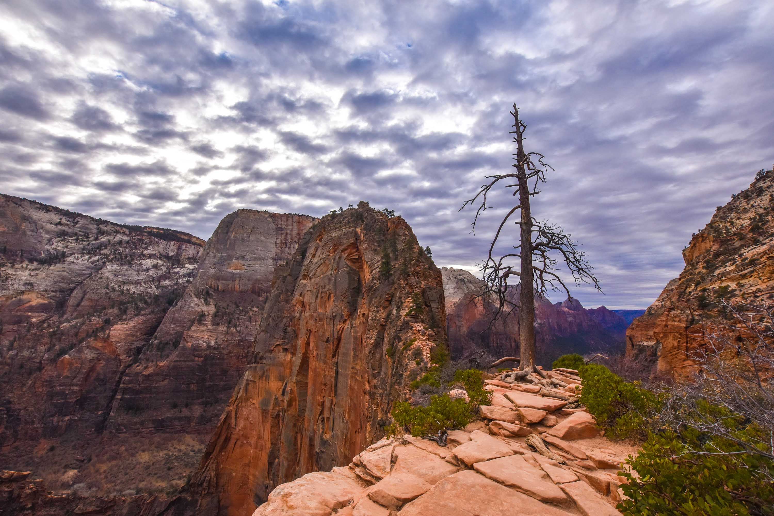Zion Trails Closed - Other things to do this Labor Day in Southern ... e40bc65a6b14b