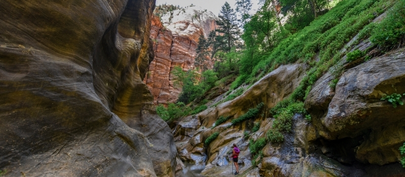 Zion National Park no longer issuing permits for The Narrows hiking trail