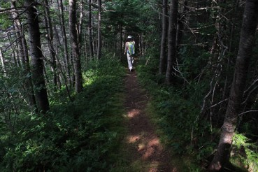 The trail descends through thick woods along a ridge.