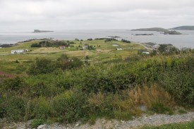 The view from the railbed above Ferryland is pretty spectacular.