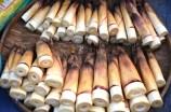 Leckere Bambussprossen