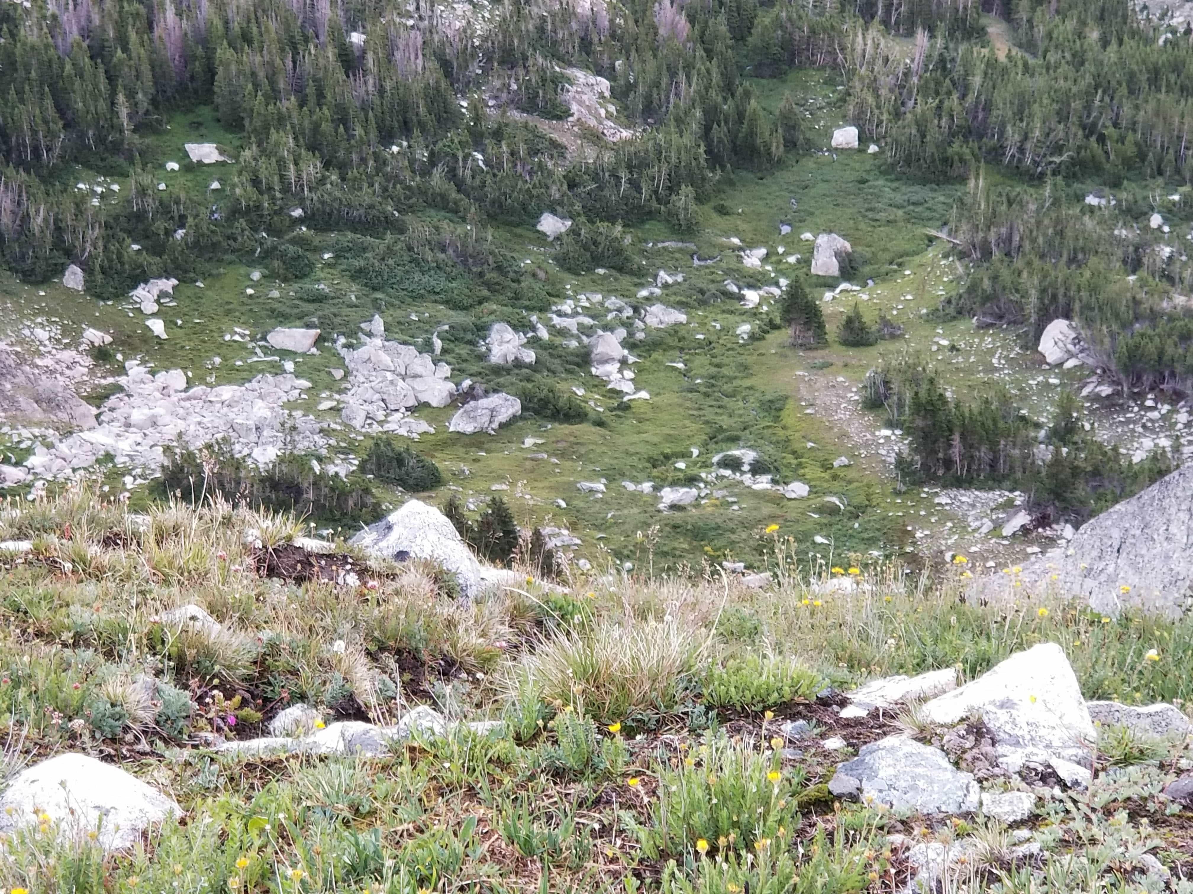 loomis lake pass