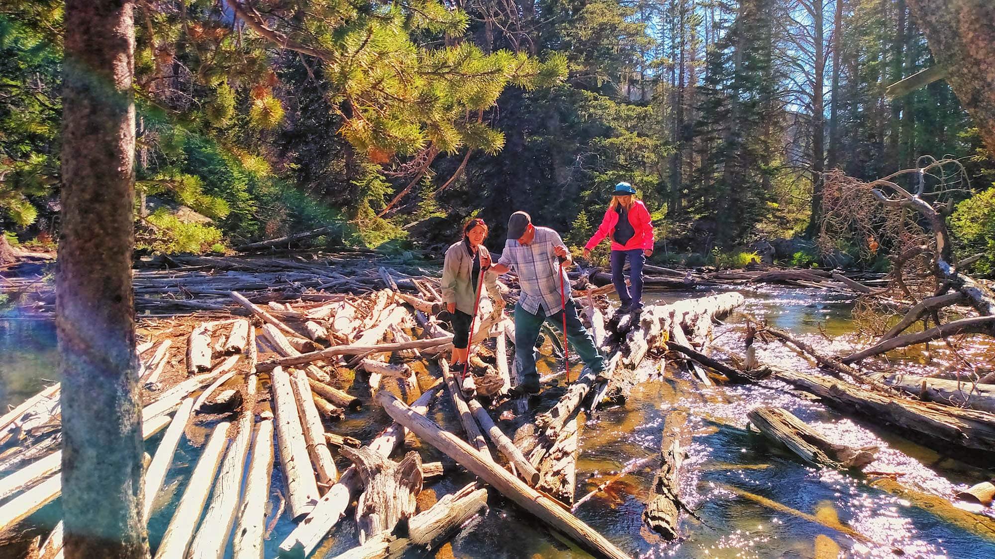 Log jam crossing at Slide Lake