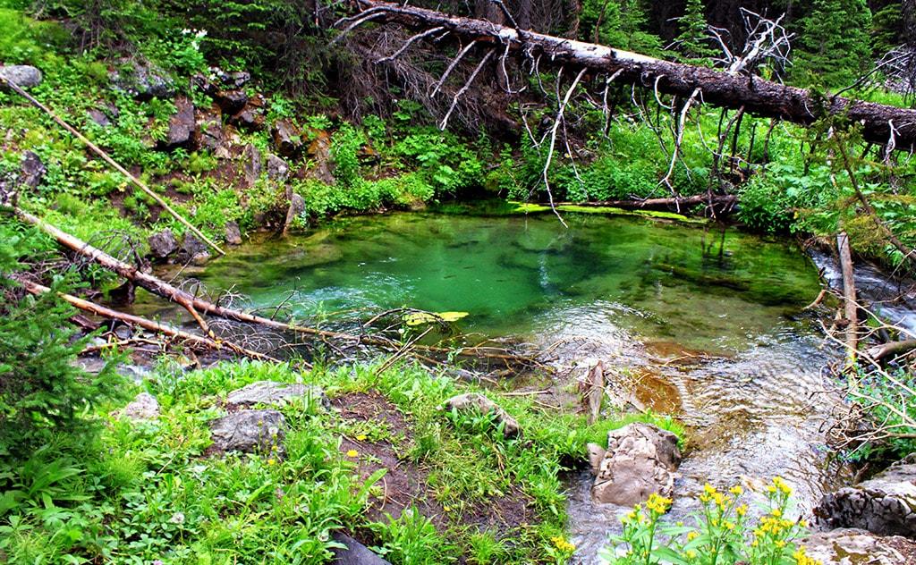 Fish Bowl Springs, Wyoming