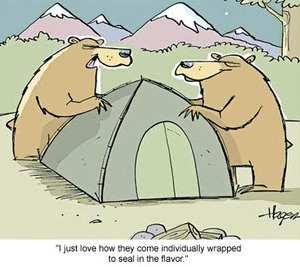 Bear Joke