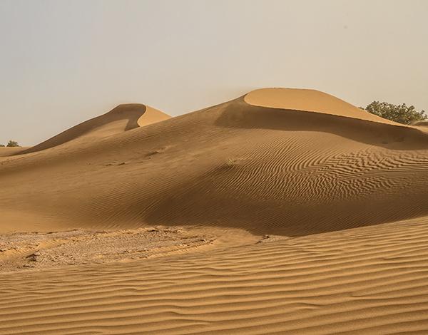 Sand dunes in the Sahara