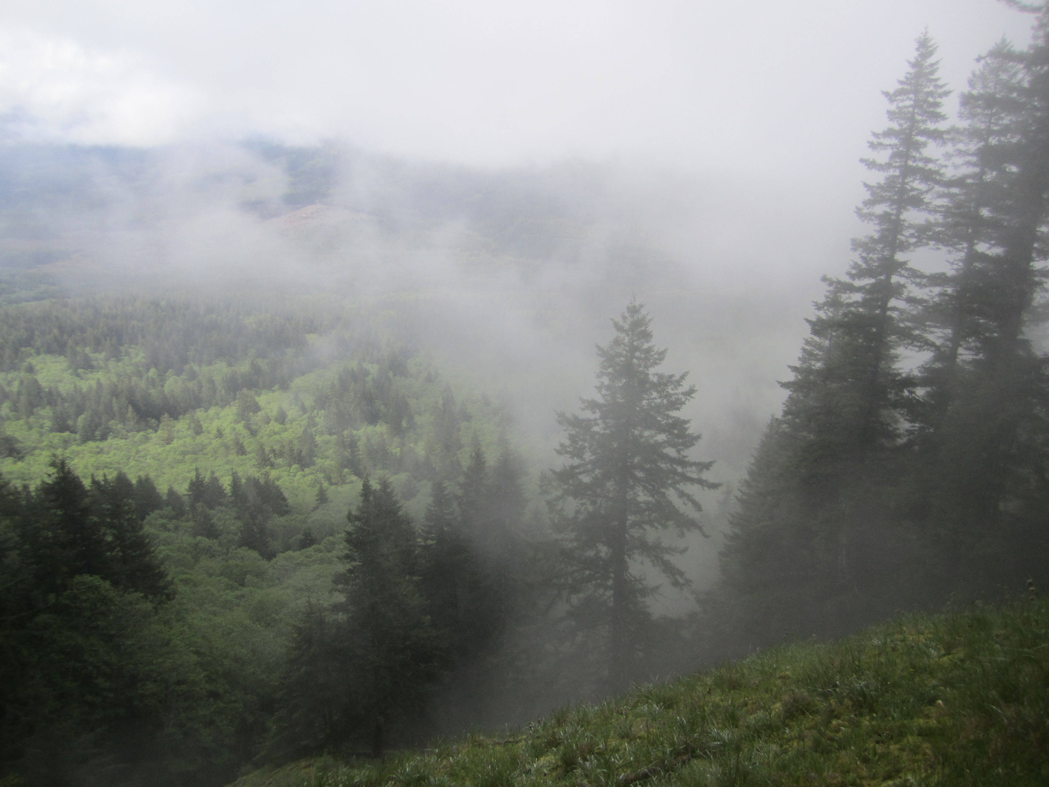 Portland Or Fall Had Wallpaper Oregon Coast Range Hikingnorthwest