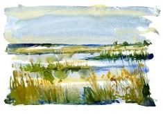 Watercolor of a coastal trail