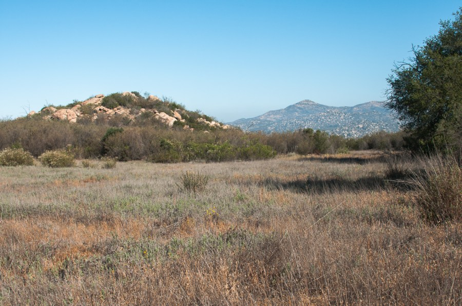 A grassy field with boulder topped hills in the distance along the Oakoasis Preserve trail