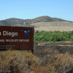 The San Diego National Wildlife Refuge