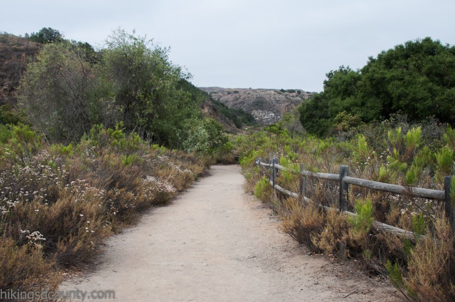 The Visitor Center Loop trail passes along the San Diego River in Mission Trails
