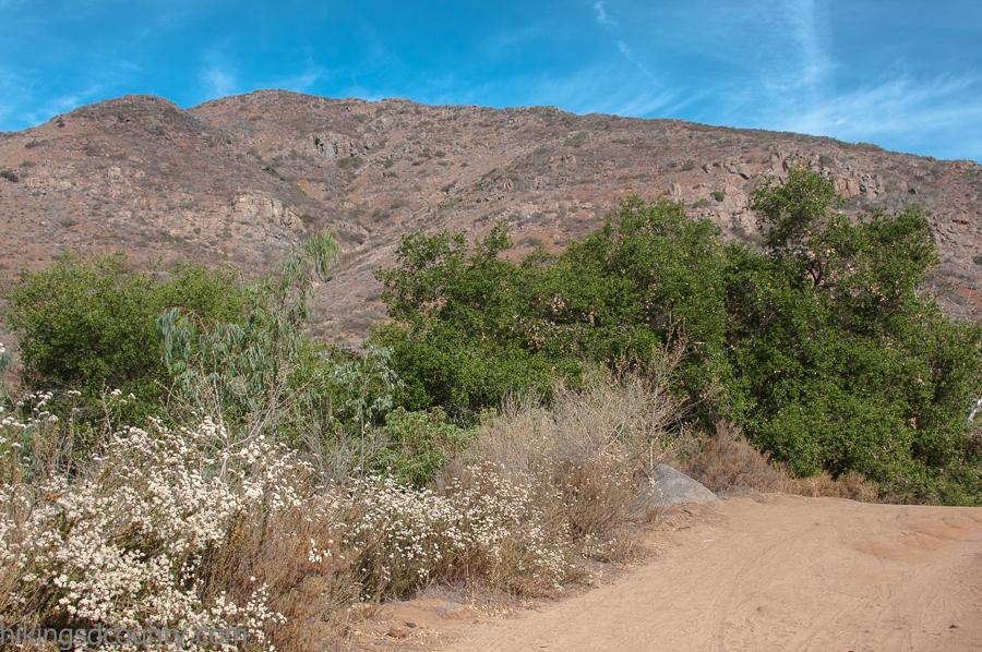 Bernardo Mountain
