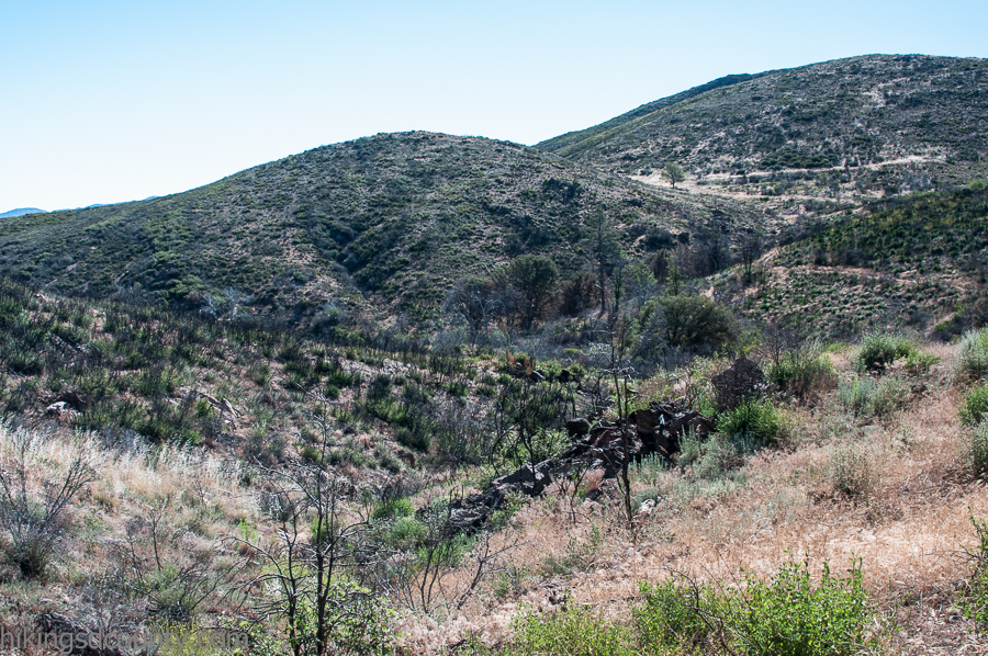 The Chariot fire burned sections of the PCT in Mt Laguna