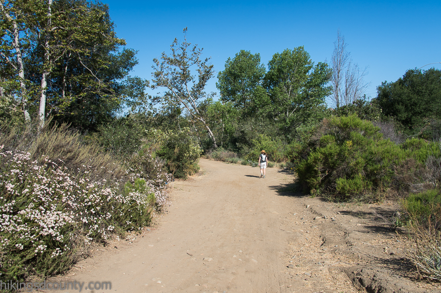Sycamore Canyon School >> Rose Canyon - Hiking San Diego County