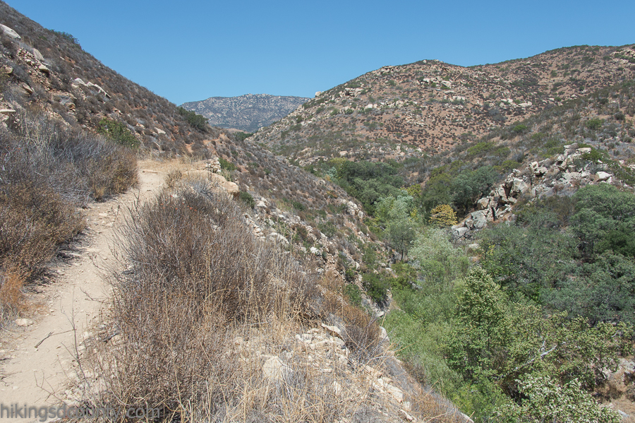 Looking down into Hollenbeck Canyon from the trail