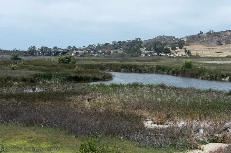View from Tern Point at San Elijo Lagoon