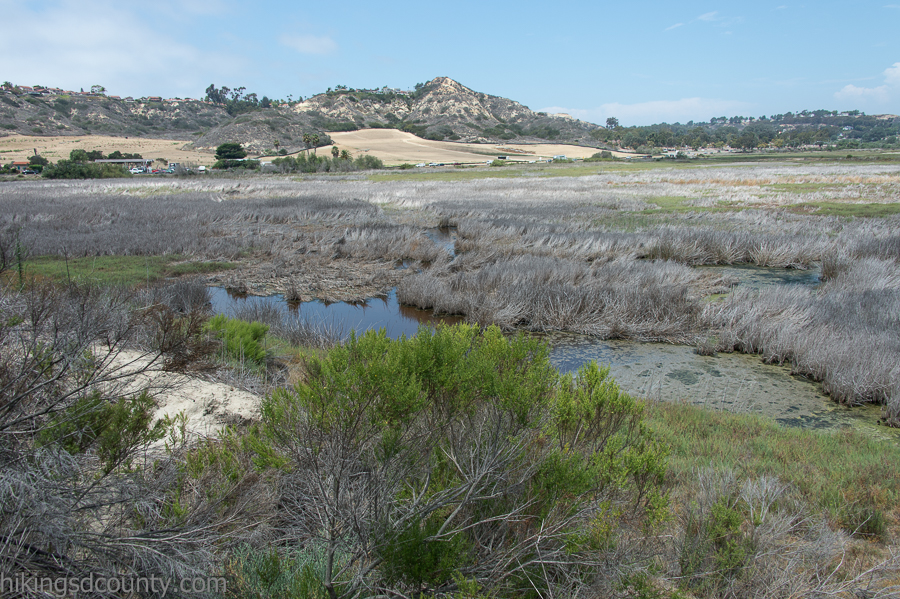 Looking east across San Elijo Lagoon